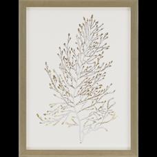 Gold Foil Algae IV